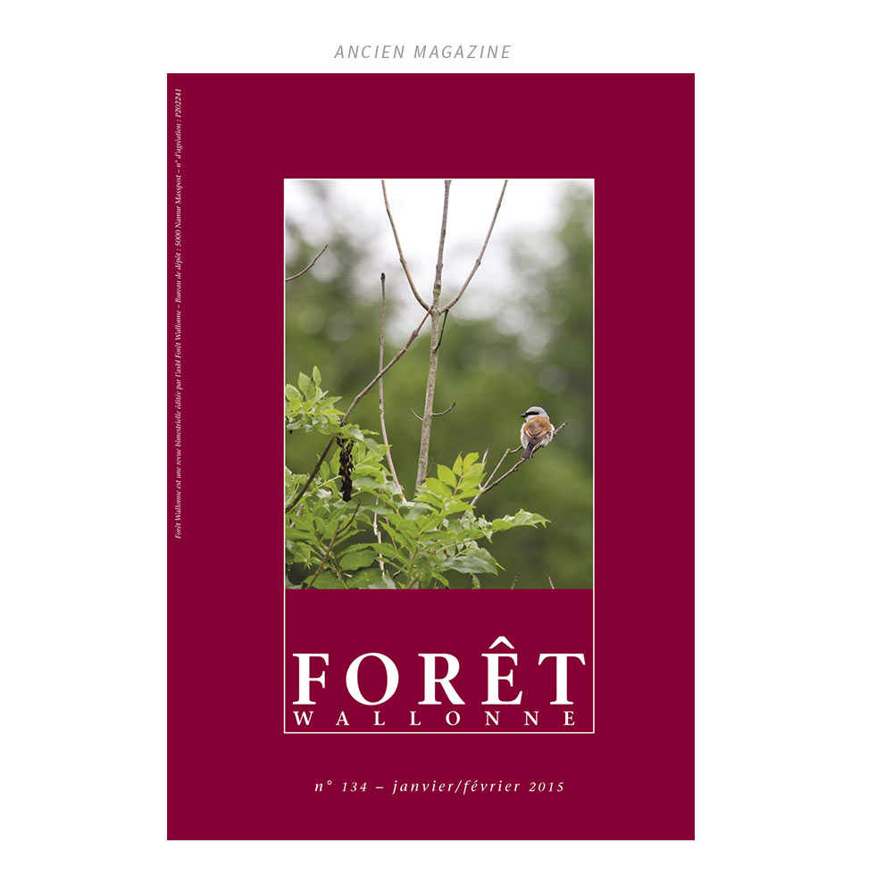foret-cover-old-1000x1000